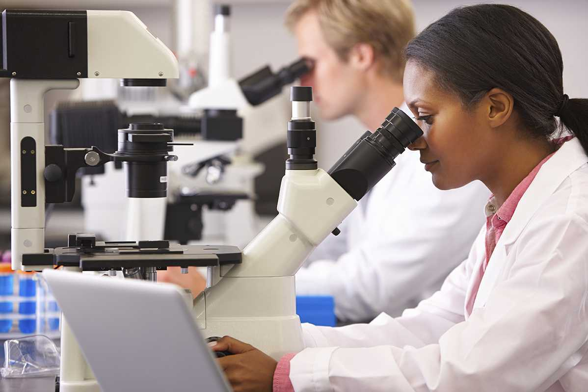Scientists Using Microscopes In Laboratory